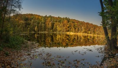 Pano Herbst 2017